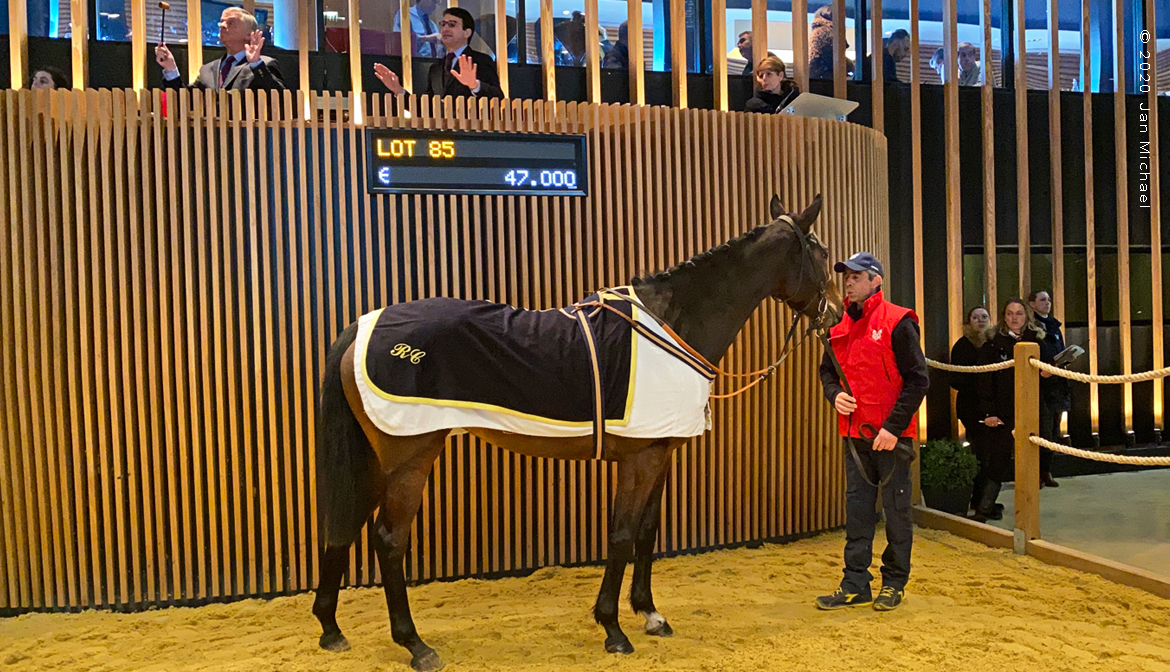 vente de yearlings à Deauville