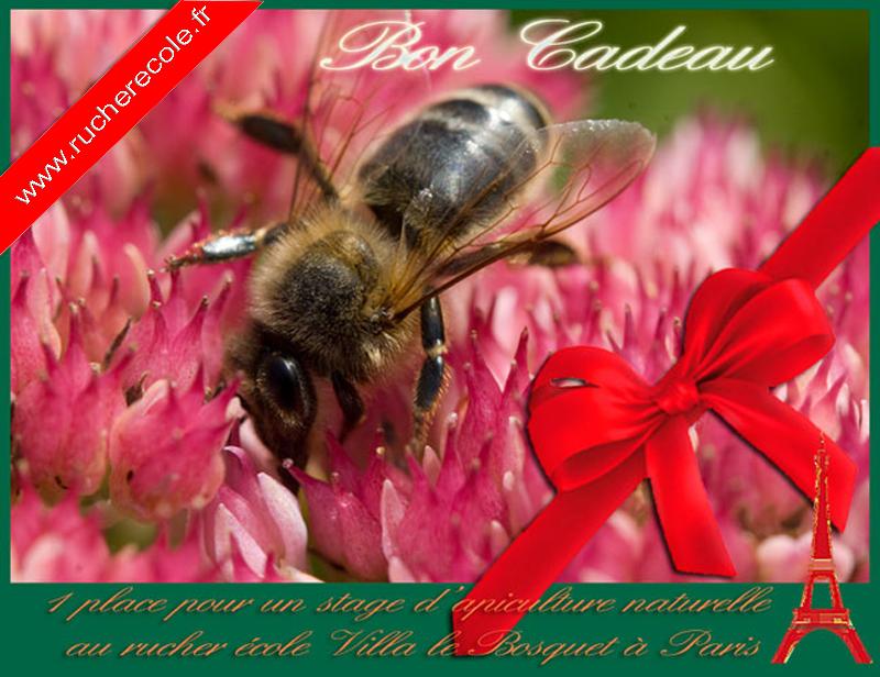 bon de cadeau - stage apiculture Paris