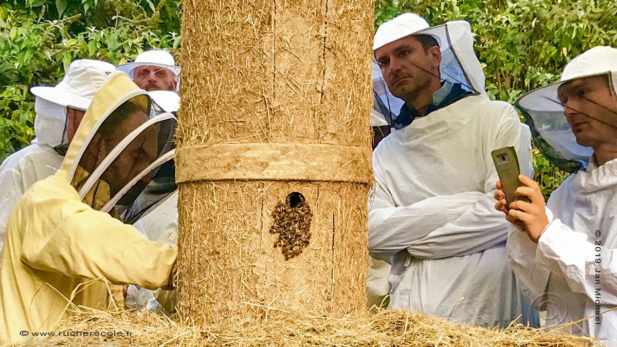 La Tour d'abeilles